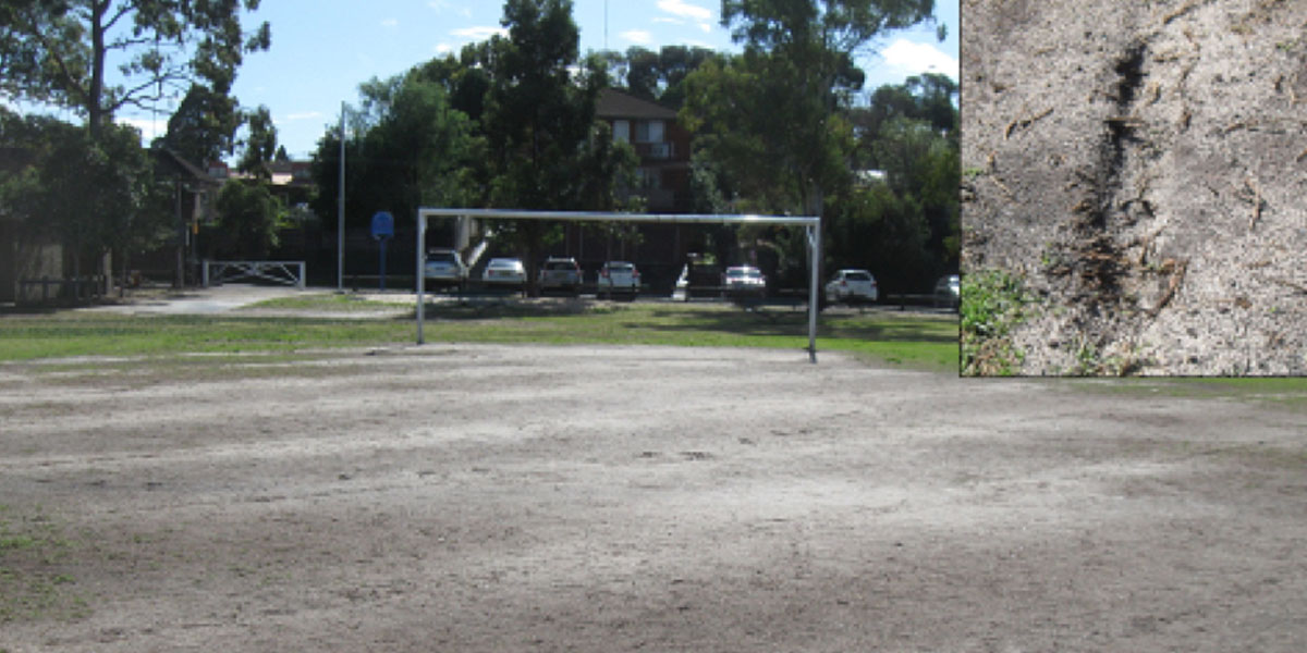 soccer field soil and lawn