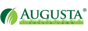 augusta zoysia lawn and grass - turfbreed