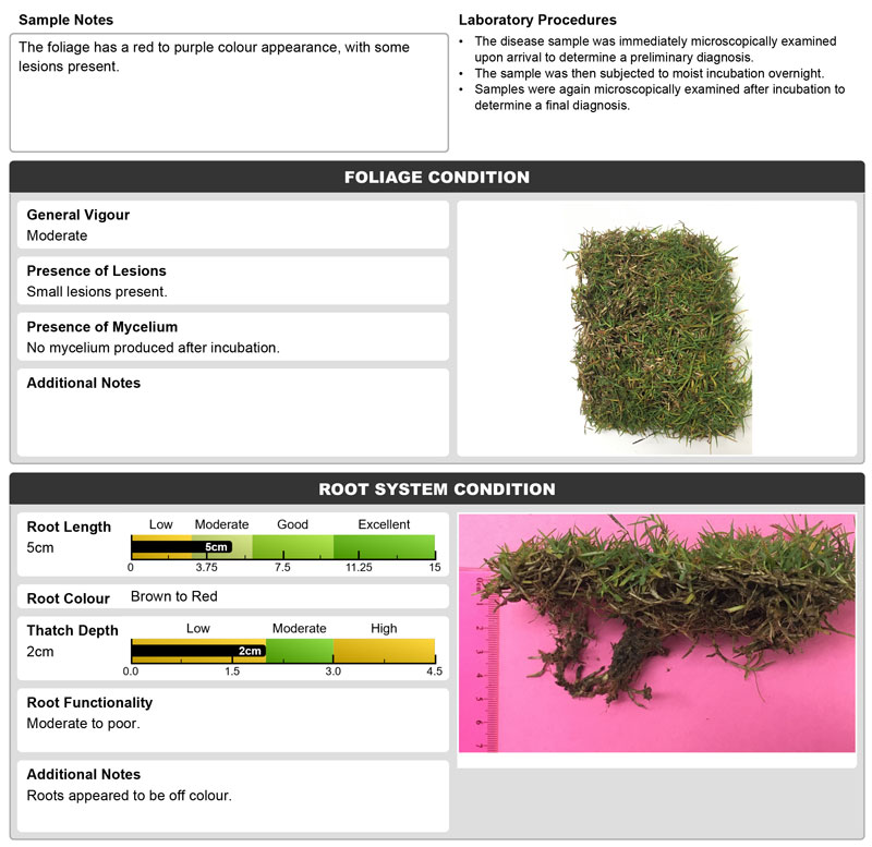 turf analysed for the presence of pathogens.