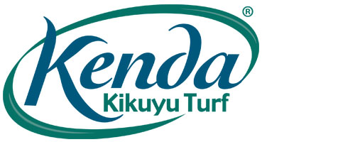 kenda kikuyu turf and lawn