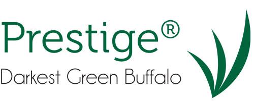 prestige darkest green buffalo logo