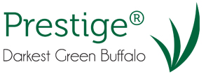 prestige dark green buffalo turf - turfbreed