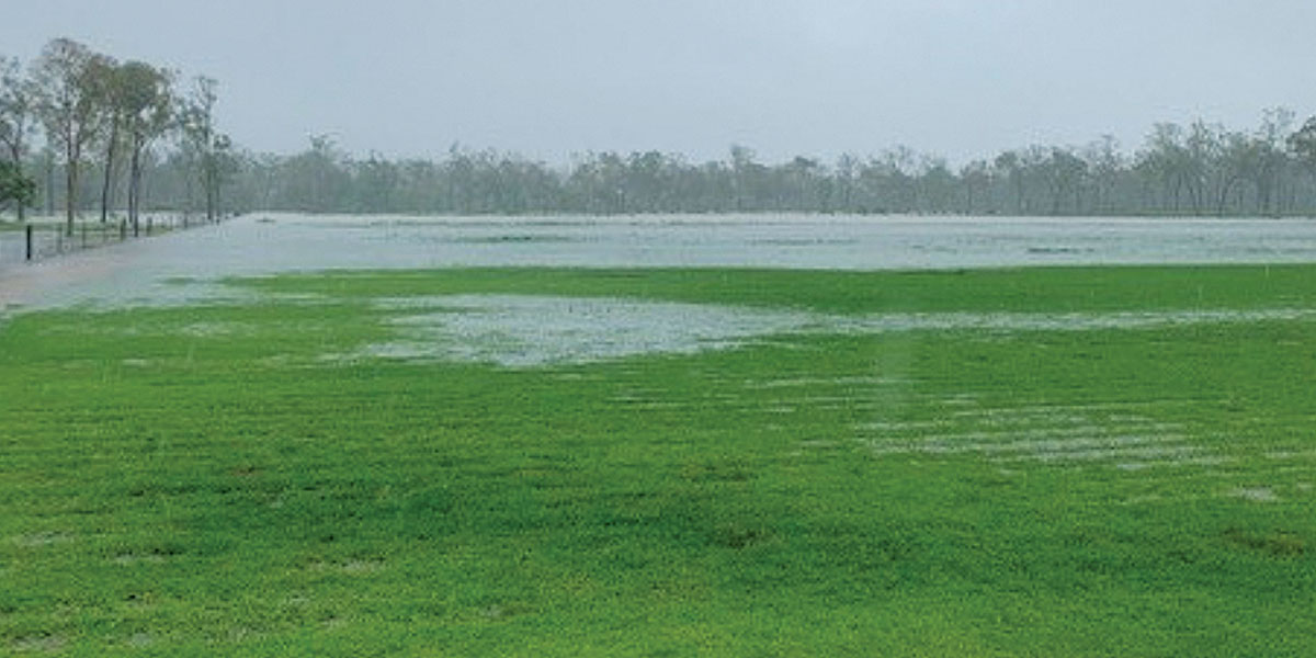 paragon turf farm townsville flooded